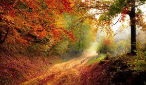 , coping, levenspad zoeken, stressmanagement